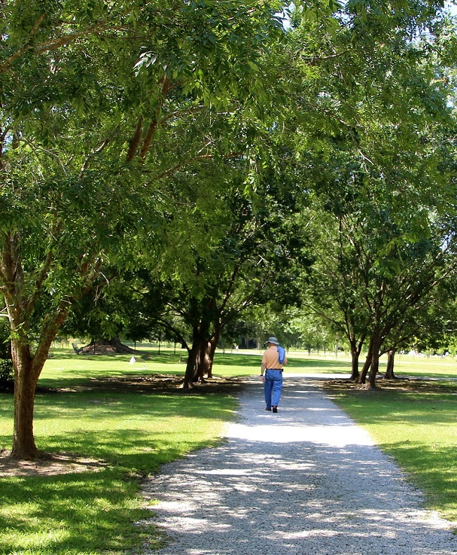Walking Path in St Joseph Abbey Cemetery