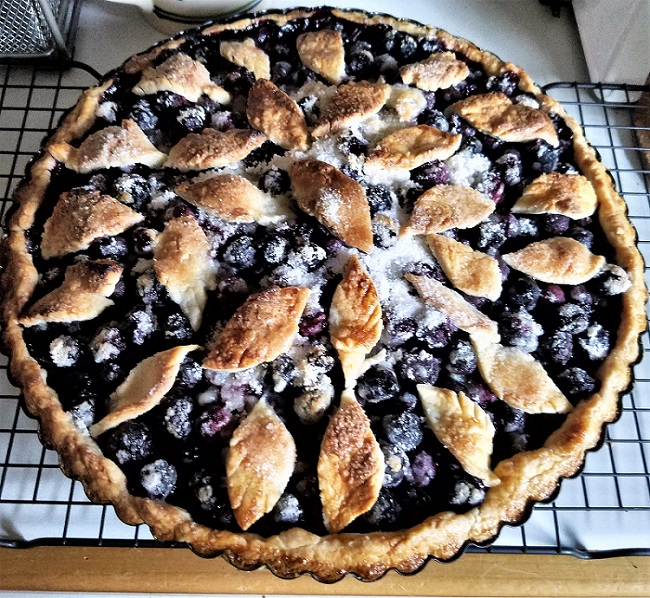 Blueberry Pie with Pate Brisee Crust, recipe from Martha Stewart's Pies & Tarts Cookbook; It is well with my Soul